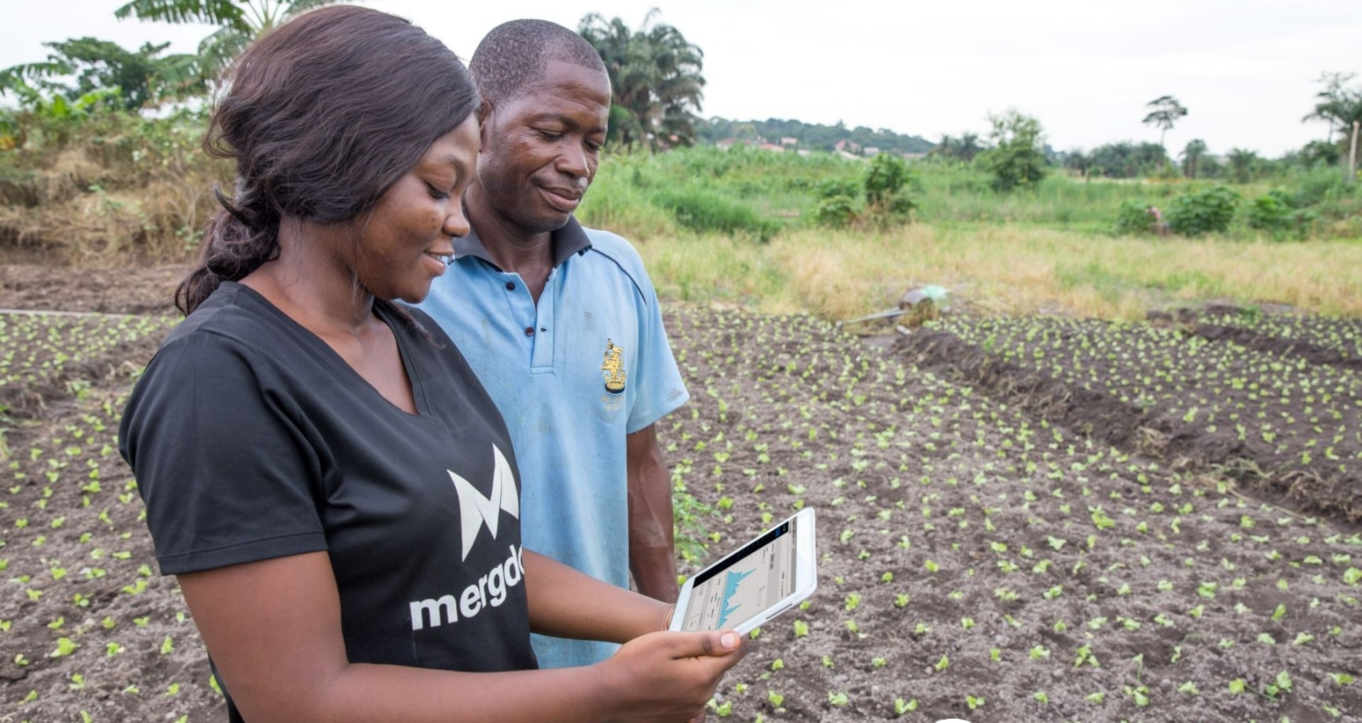 Farmers in field with tablet
