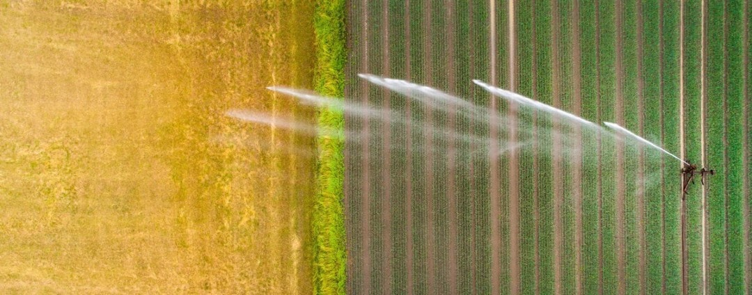 Agricultural device watering the field