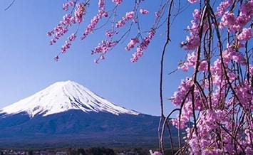 Japan Dream Tours
