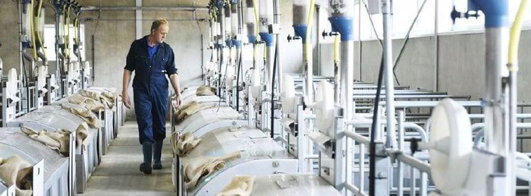 Boer loopt langs machines in stal